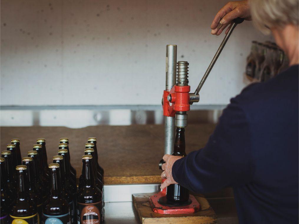 Tudor Brewery Bottling